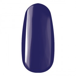 R110 ROYAL gel 4,5 ml